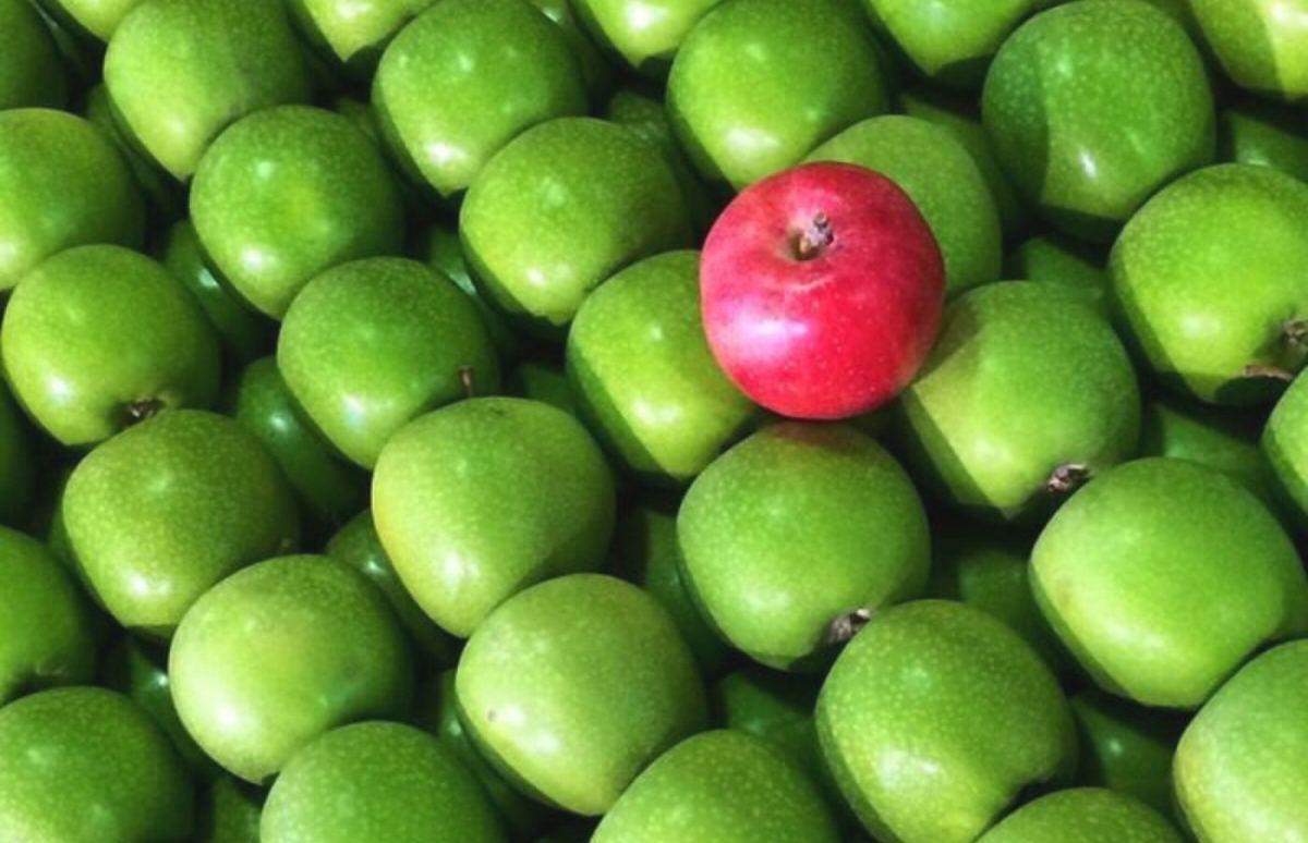 Ziel Employee Experience: Wenn HR zum Produktentwickler wird