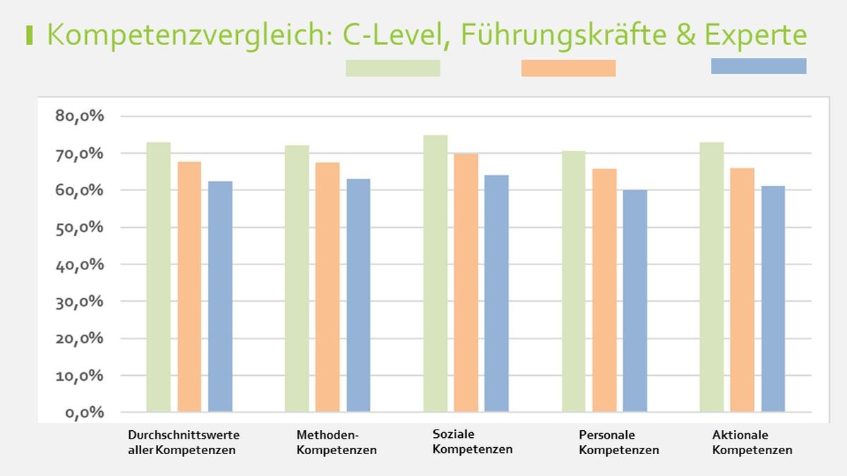 Grafik Kompetenzvergleich Führungskräfte